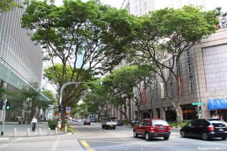 Desi e plin de cladiri cu zeci de etaje, orasul abunda in verdeata