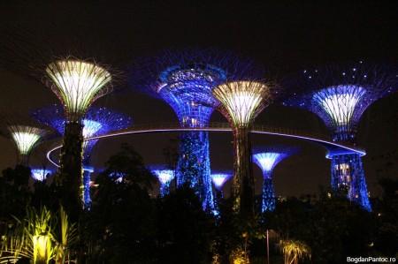Marina Bay Sands 00004
