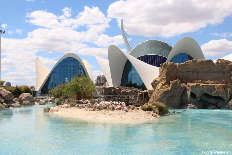 Oceanografic Valencia 00023