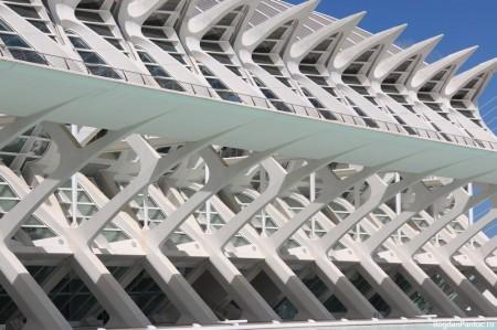 Orasul Artelor si Stiintei Valencia Muzeul stiintelor (5)