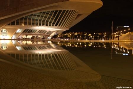 Orasul Artelor si Stiintei Valencia Palatul Artelor Regina Sofia (3)