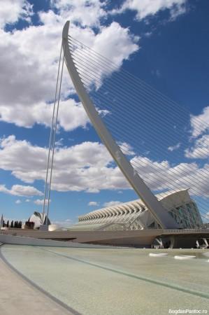 Orasul Artelor si Stiintei Valencia Puente del Grao (2)