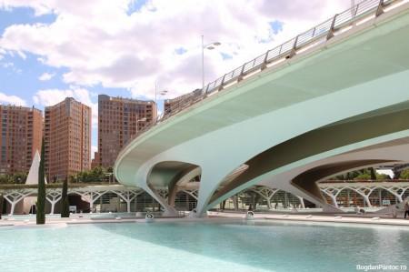 Orasul Artelor si Stiintei Valencia puente de monteolivete (2)