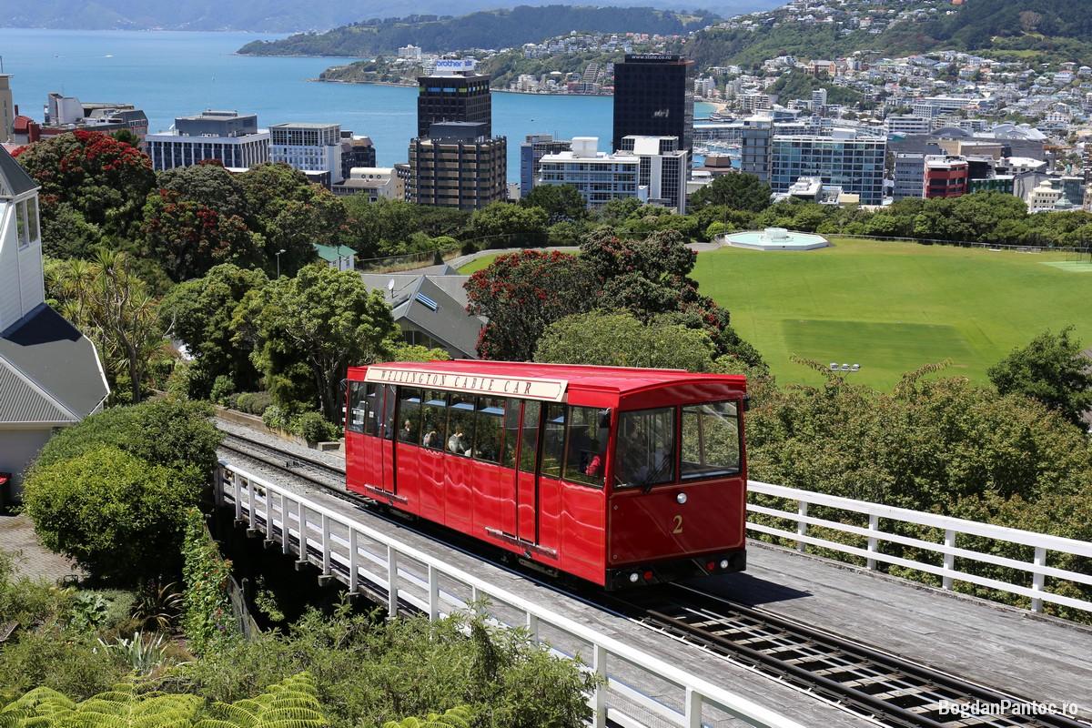 Plimbare prin Wellington intr-o zi cu 3 anotimpuri - Noua Zeelanda ...