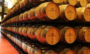 O noapte la Crama Eguren Ugarte, Lagurdia si imprejurimile – Rioja Alavesa, Spania