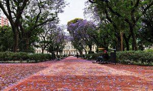 Cateva impresii despre Buenos Aires, Argentina