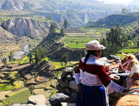 Canionul si Valea Colca, Peru