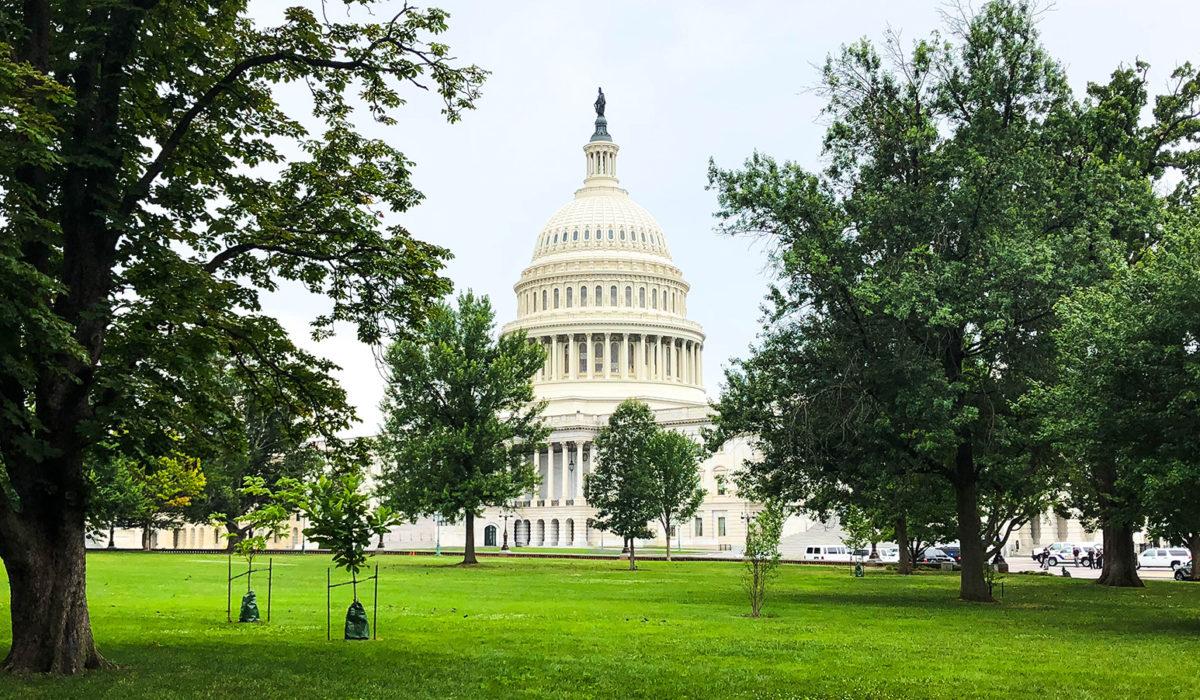 Washington DC, mic ghid de vizitare – USA